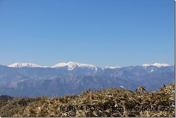 竜ヶ岳登山道からの南アルプス