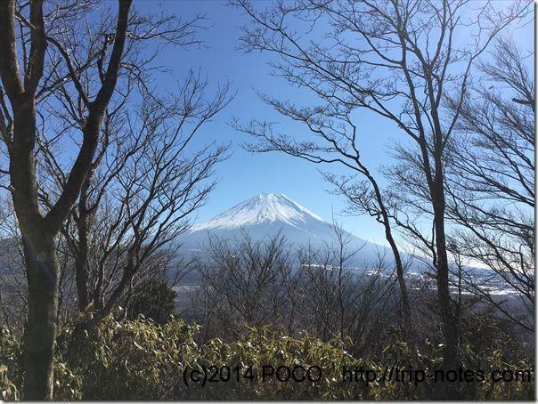 竜ヶ岳登山道からの富士山