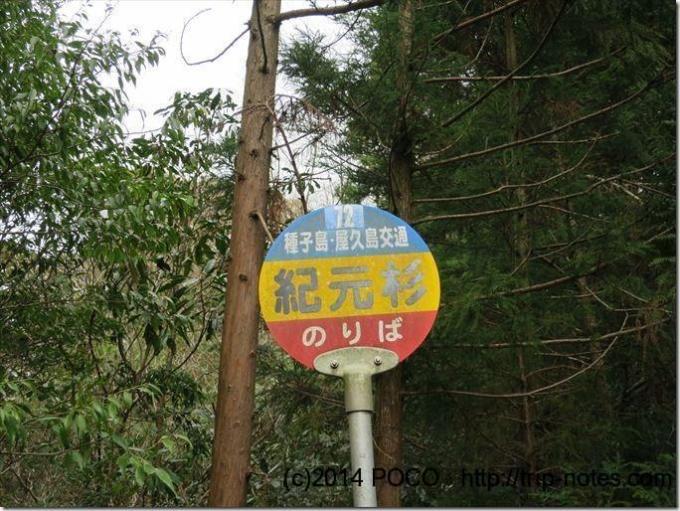 屋久島のバス停「紀元杉」
