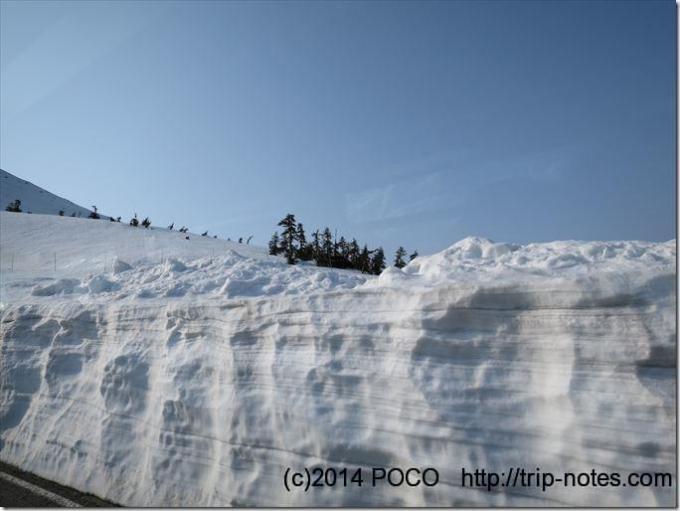 立山高原バスからの景色