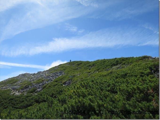 爺ヶ岳南峰