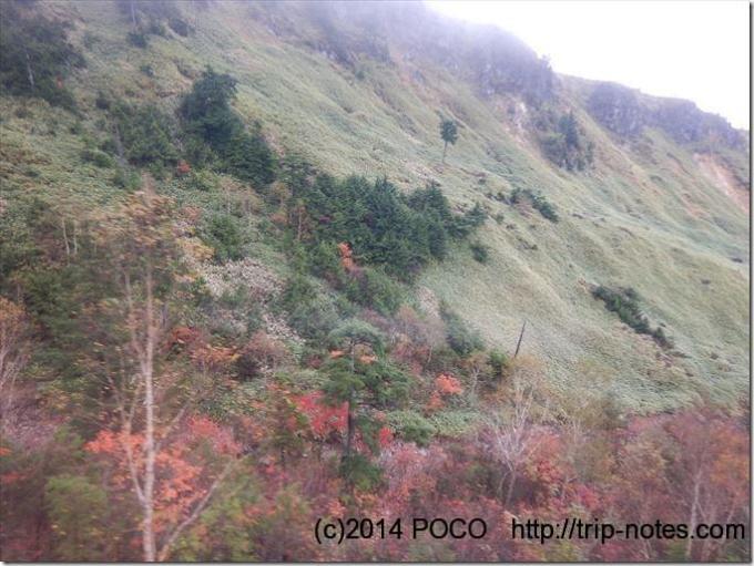 白根火山ロープウェイ紅葉