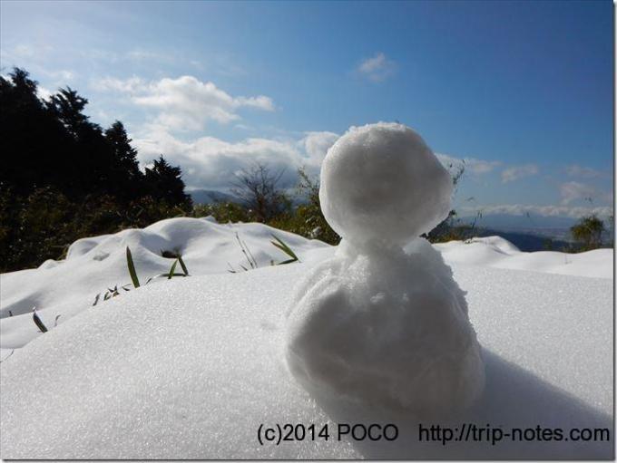 大野山の雪