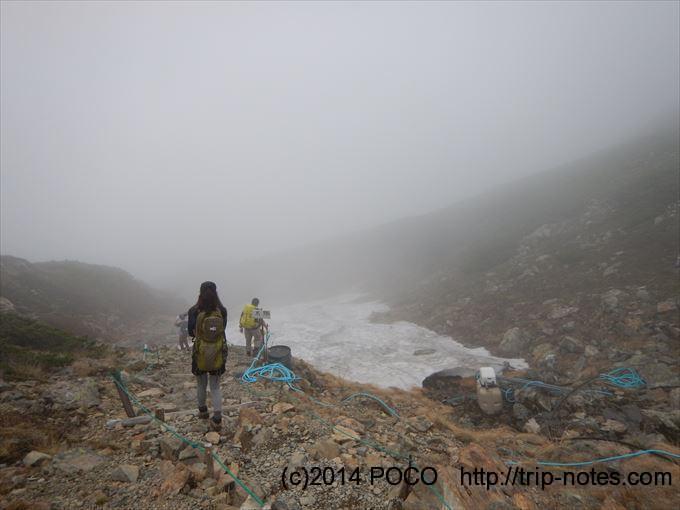 仙丈ヶ岳の雪渓