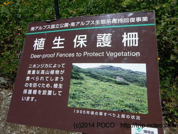 北岳 植生保護柵