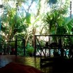 Hostel Timbo jardín