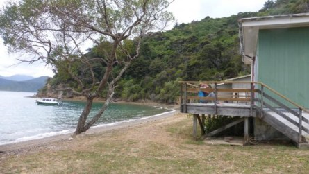 appli utiles en Nouvelle Zelande