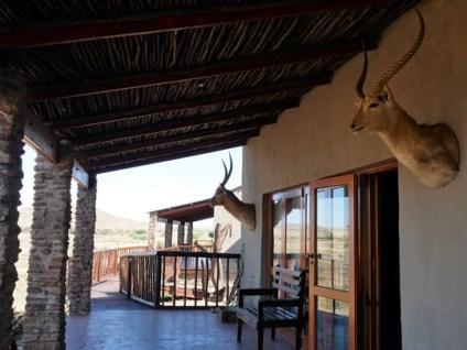 gannabos guesthouse gariep reserve