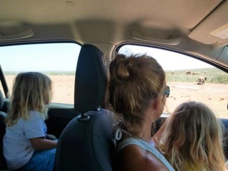 afrique du sud avec des enfants safari