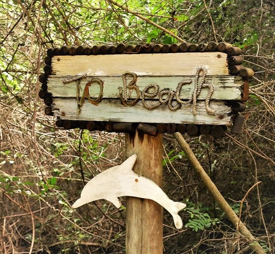 rocktail camp - wilderness safari - acces plage (2)