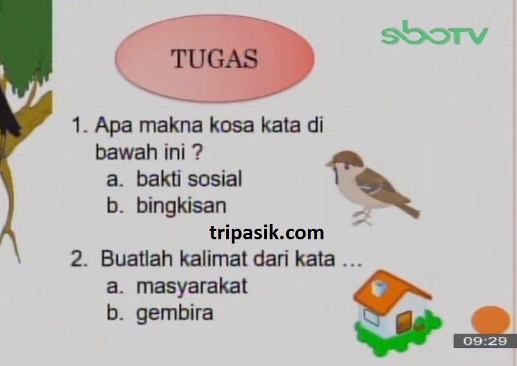 Soal dan Jawaban SBO TV 13 Oktober SD Kelas 2