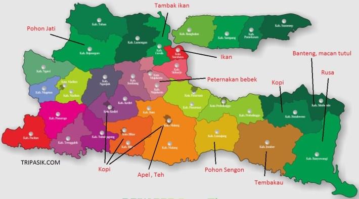 Peta Persebaran Hewan dan Tumbuhan di Jawa Timur