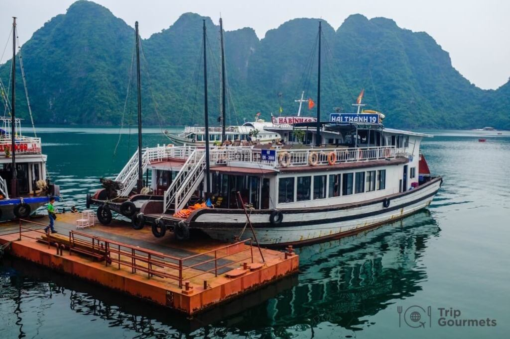 Halong bay cruise review day boat