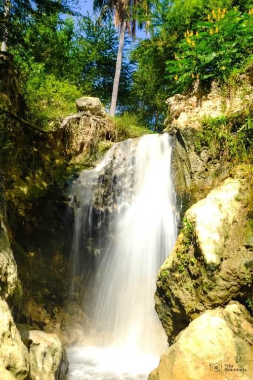 Things to do in Mui Ne Muine waterfall fairy stream palm