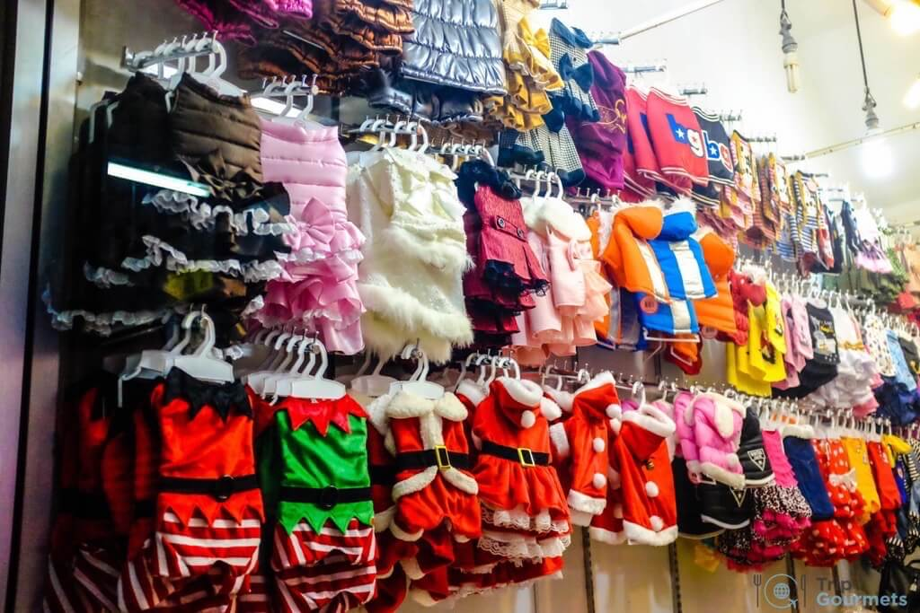 Best Markets in Bangkok Chatuchak dog animal clothes