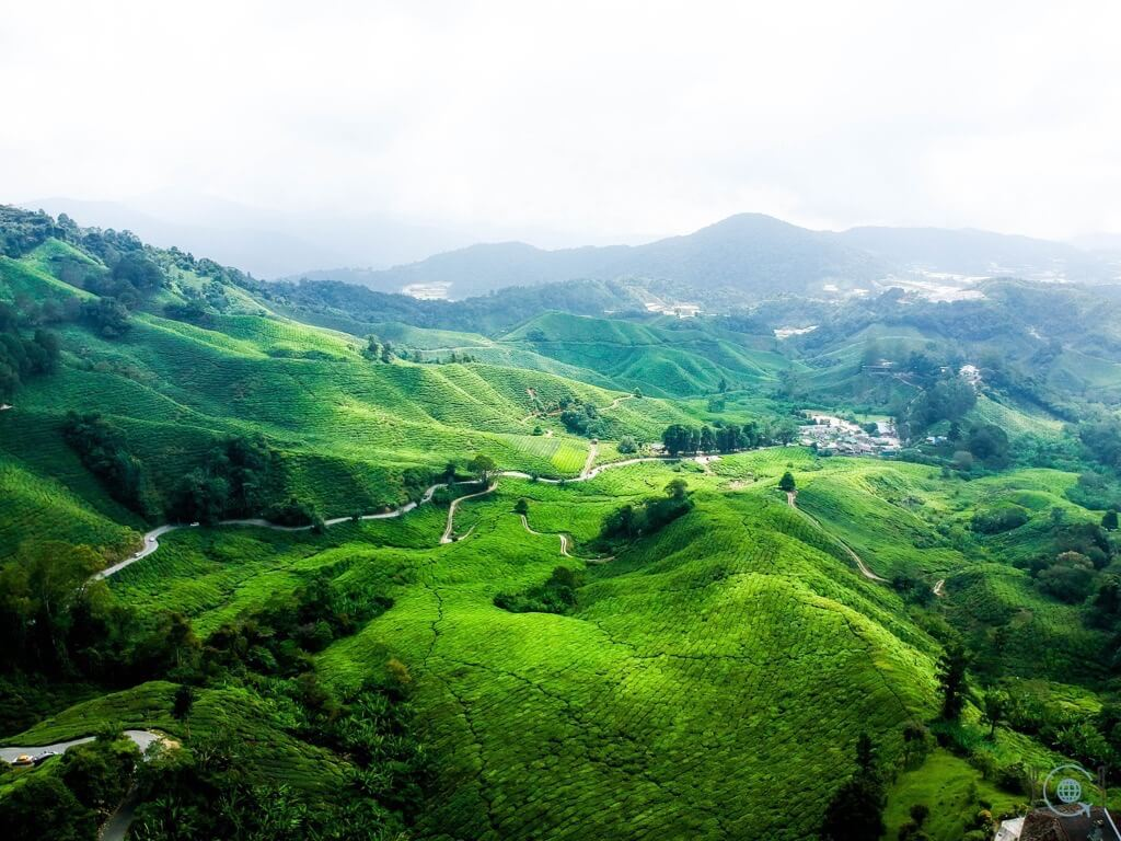 Things to do in Ipoh Cameron Highlands