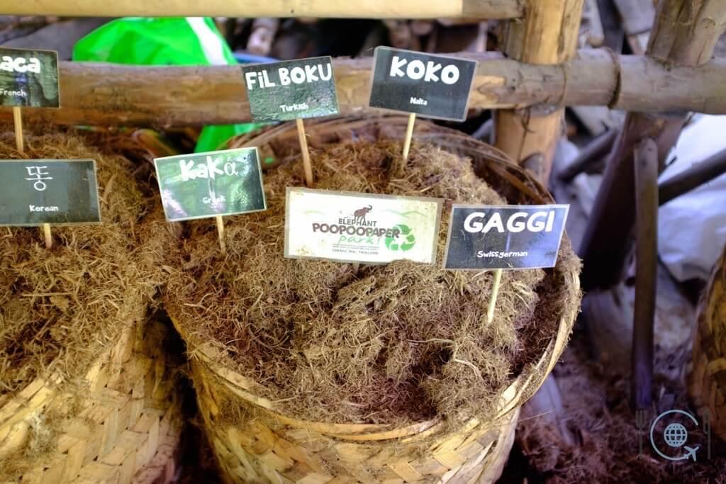 Chiang Mai Itinerary Poopoopaper
