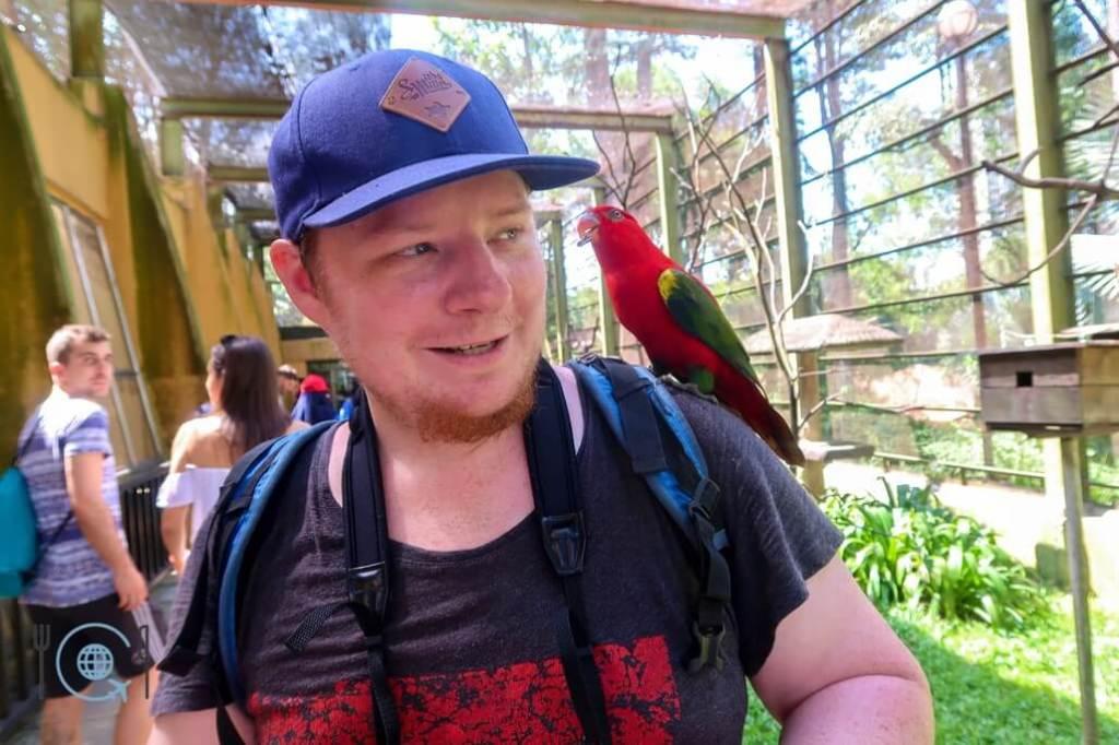 Kuala Lumpur Itinerary Parrot