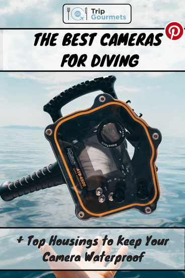 The best cameras for diving - Pinterest