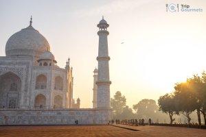 Taj Mahal Sunrise Tour from Delhi - Morning Sun