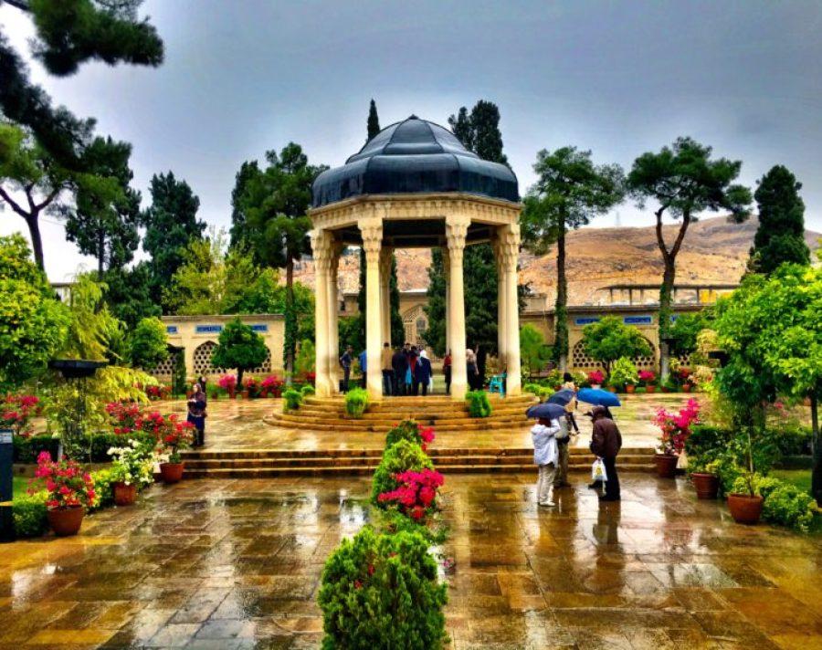 invest in shiraz