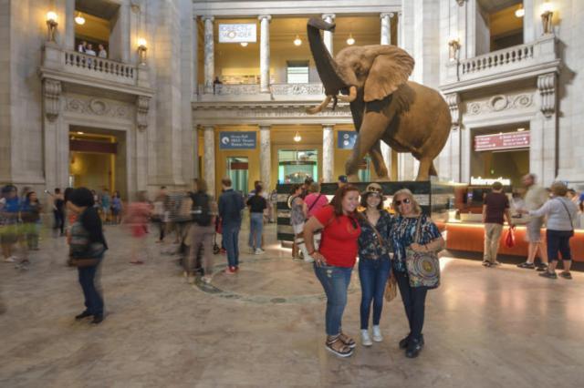 En el Museo Natural de Historia