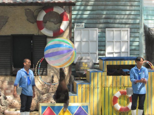 Penguine games in Bangkok (Krung Thep ), Thailand - Trip from India | Travelogue | Places to visit in Bangkok