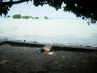 pulau pari5