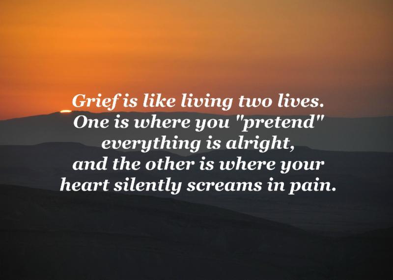 bar-haim-grief 2