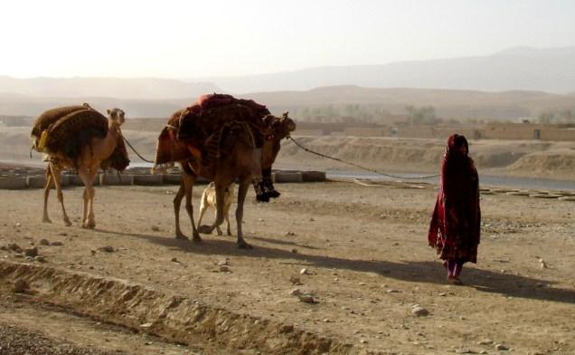 Kuchi Nomads