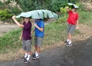 No more improptu banana leaf umbrellas