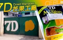 7D芒果乾工廠 |菲律賓宿霧 |100g,200g價格比價,哪裡買比較便宜?