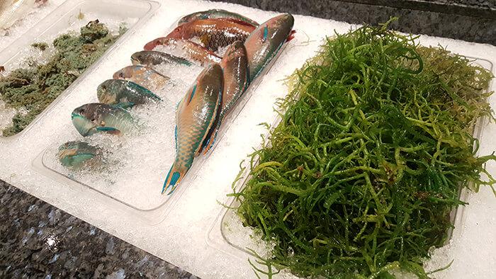 seafood-city-009