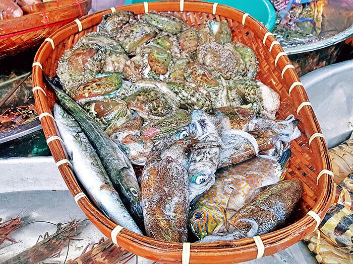 Seafoods,海產,活魚