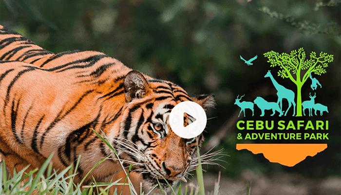 宿霧野生動物園(Cebu Safari and Adventure Park)