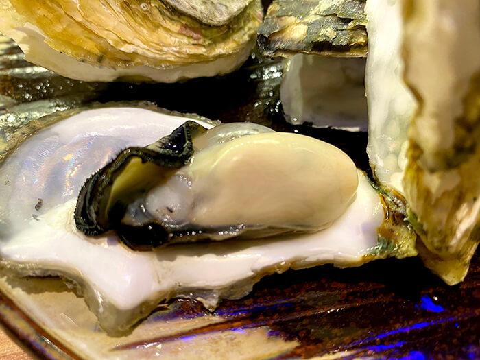 生蠔, 牡蠣, 蚌