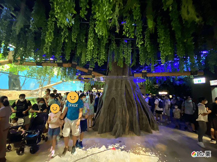 xpark生態館