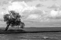 Baltic2016_Nida_103