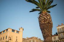 2017-07-08_369_Corsica_Propriano