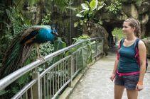 TripLovers_Malaysia_KL_193_KL-Bird-Park