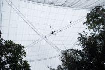 TripLovers_Malaysia_KL_196_KL-Bird-Park