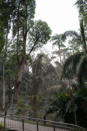 TripLovers_Malaysia_KL_199_KL-Bird-Park