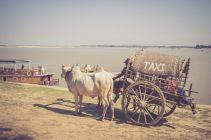 TripLovers_Mandalay_184_mototrip2