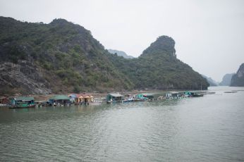 TripLovers_HaLong_115