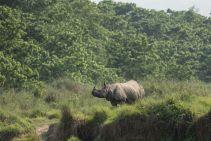 TripLovers_Chitwan_019a