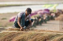 TripLovers_Chitwan_043