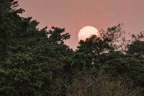 TripLovers_Chitwan_052