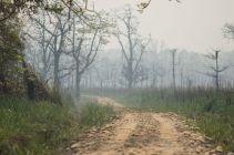 TripLovers_Chitwan_115b