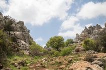 Andalusia2018_081_ElTorcal