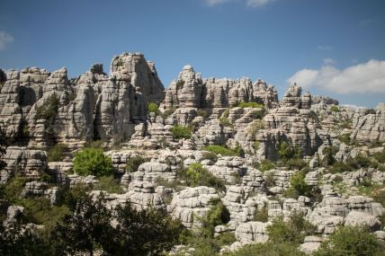 Andalusia2018_099_ElTorcal